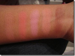 BH Cosmetics 10 color palette Professional Blush swatches and quick view (2/6)
